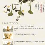 NHK美の壺のテディベア